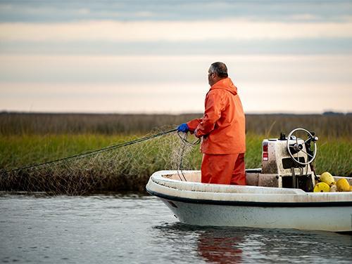 Commercial gillnet fisherman pulling nets
