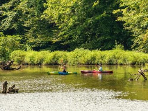two kayakers exploring a marsh at Lake Crabtree in Raleigh, NC