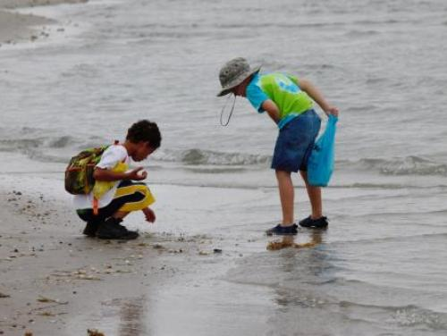 Children looking at shells on the beach