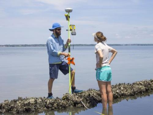 Researchers at a coastal reserve site