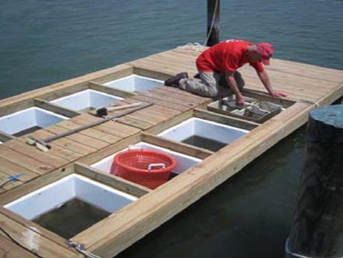 Floating Upwelling Aquaculture System