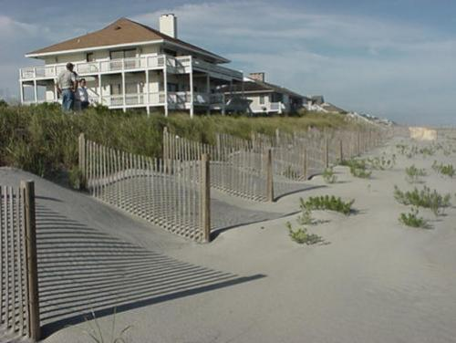 compliant sand fencing on the beach