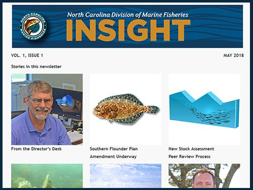 May 2018 Insight Newsletter