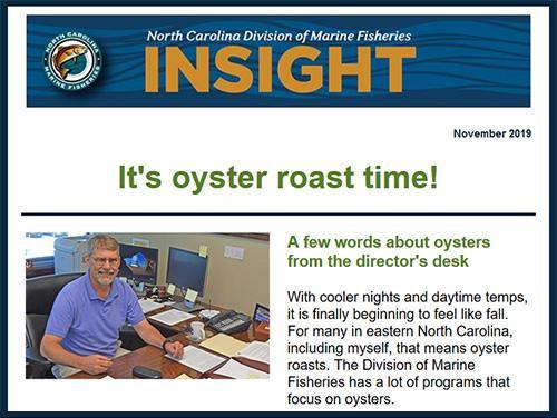 November 2019 Insight Newsletter