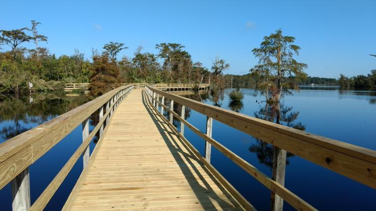 Boardwalk along the Pasquotank River
