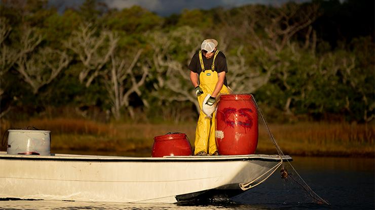 commercial flounder fisherman