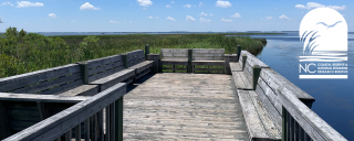 Currituck Banks Boardwalk