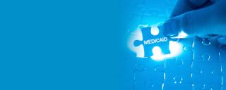 medicaid puzzle piece
