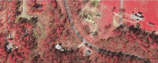 Image of color infrared band on aerial photography.
