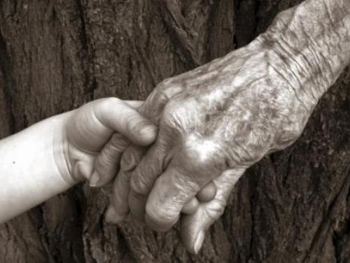 Elderly hand holding child's hand