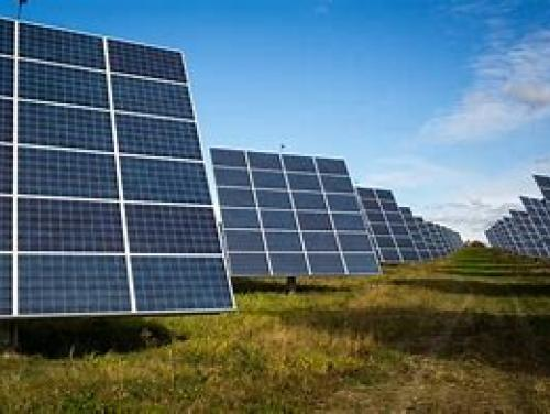 Photo of solar panels in a field