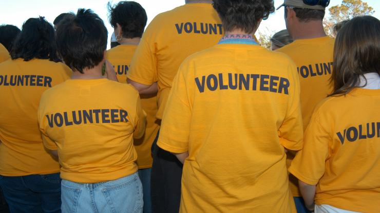 """Group of people wearing yellow tshirts that say """"Volunteer"""" across the back"""