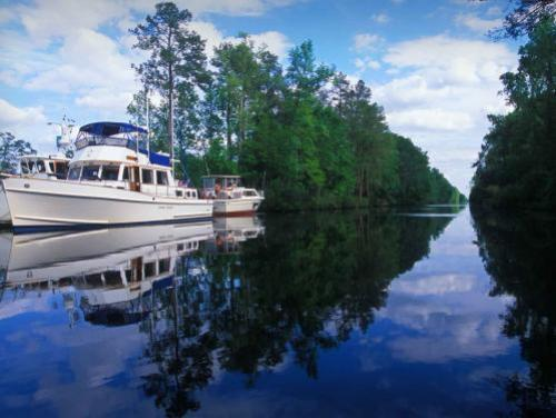 Boat in the Dismal Swamp canal