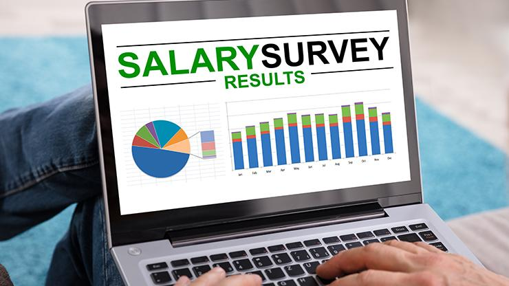 laptop screen showing salary survey results