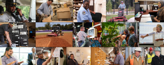 employees working in a diverse number of fields