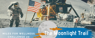 Astronaut on the moon saluting with the American flag and lunar module in the background.