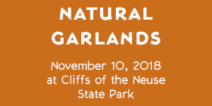 Cliffs of the Neuse State Park – Natural Garlands – November 10, 2018