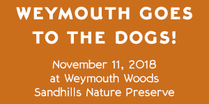 Weymouth Woods Sandhills Nature Preserve – Weymouth Goes to the Dogs! – November 11, 2018