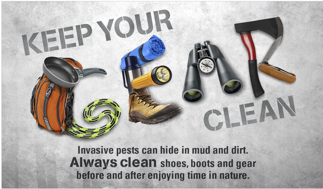 Keep Your Gear Clean