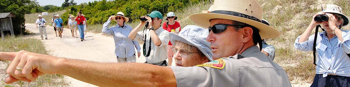 Bird watching at Hammocks Beach State Park