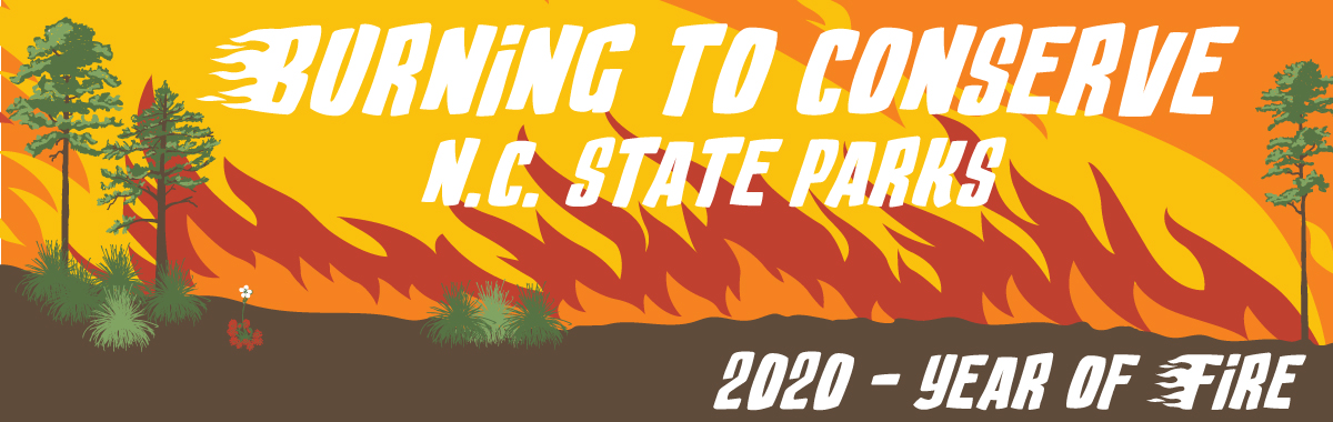 North Carolina State Parks – Year of Fire – Burning to Conserve – Artwork by L. Tucker