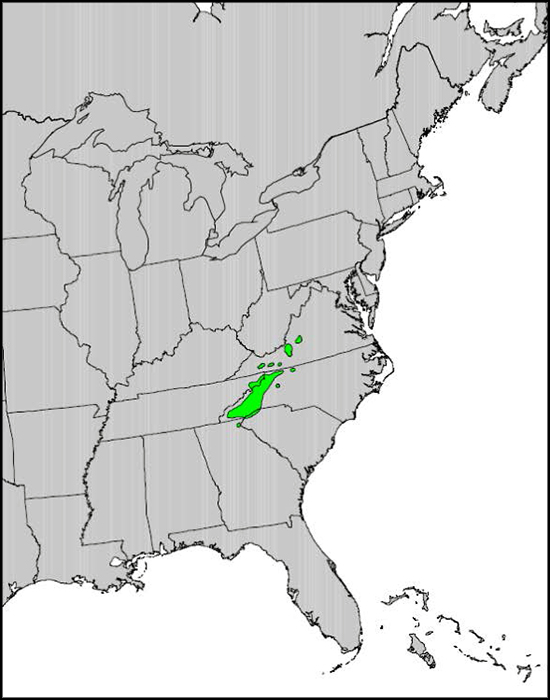 Carolina hemlock range. Photo courtesy of USGS.