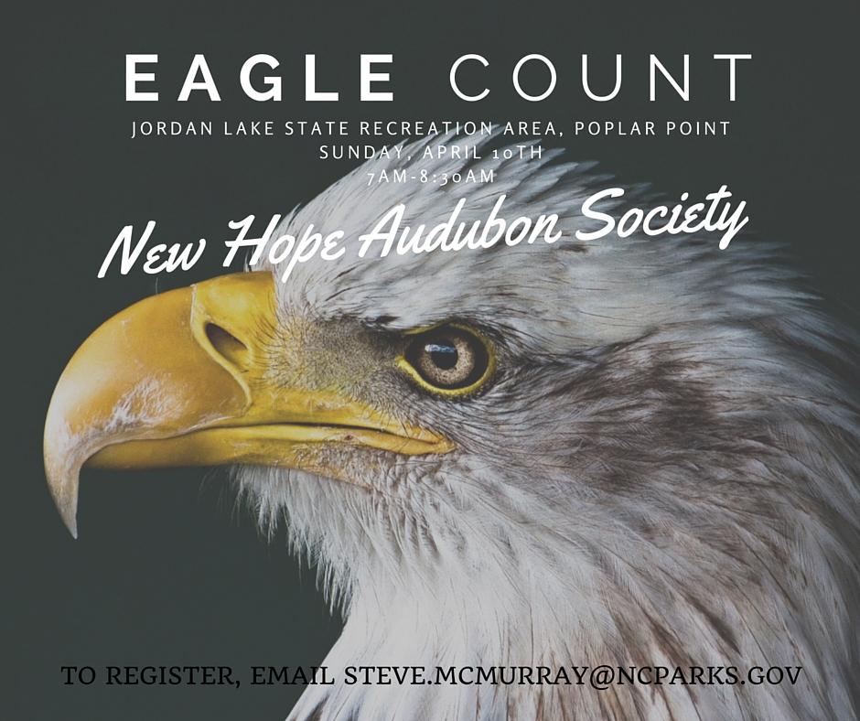Eagle Count Jordan Lake