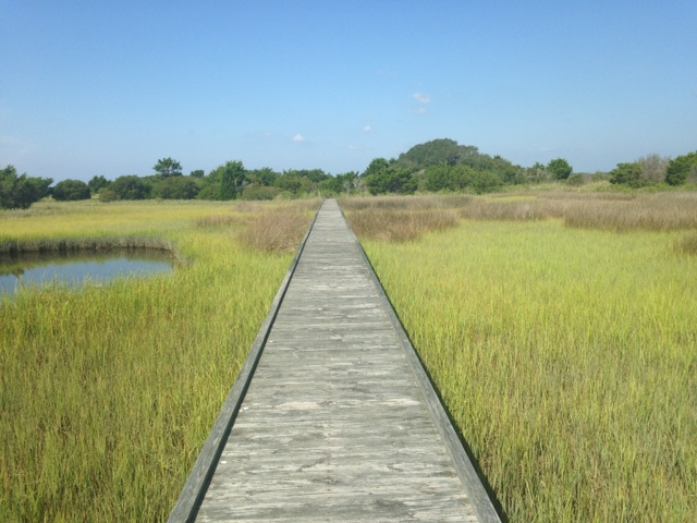 Long boardwalk over the salt marsh on the Basin Trail