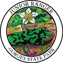 Junior Ranger patch – Gorges State Park