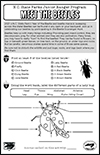 Junior Ranger Pocket Activity - Meet the Beetles thumbnail