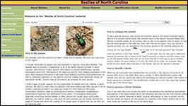 Beetles of North Carolina, a NC Biodiversity Project website, screenshot