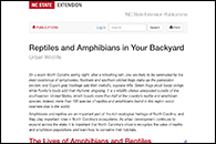 NC State Extension - Reptiles and Amphibians in Your Backyard
