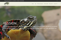 North Carolina Partners in Amphibian and Reptile Conservation