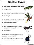 Screenshot of Beetle Jokes worksheet