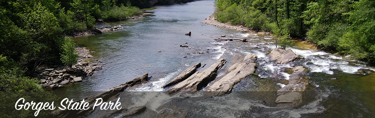 Toxaway River at Gorges State Park. Photo by A. Coburn.
