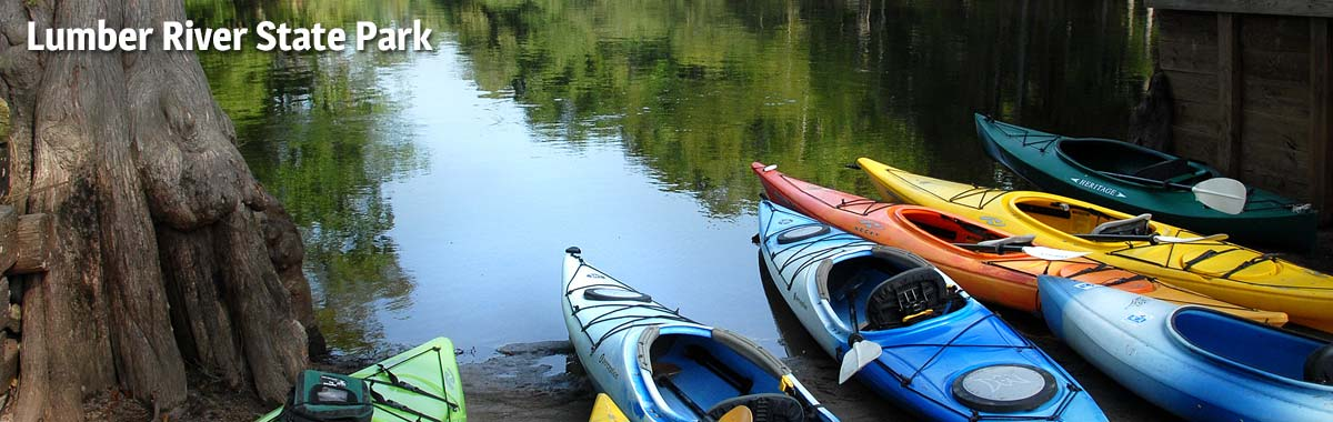 Paddle one of the country's Wild and Scenic rivers at Lumber River State Park