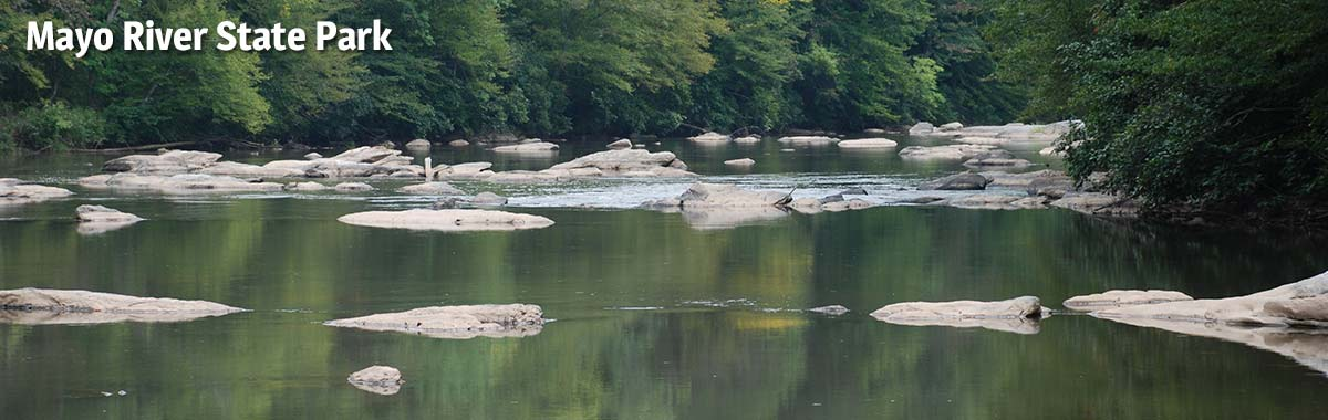 The river is perfect for paddling at Mayo River State Park