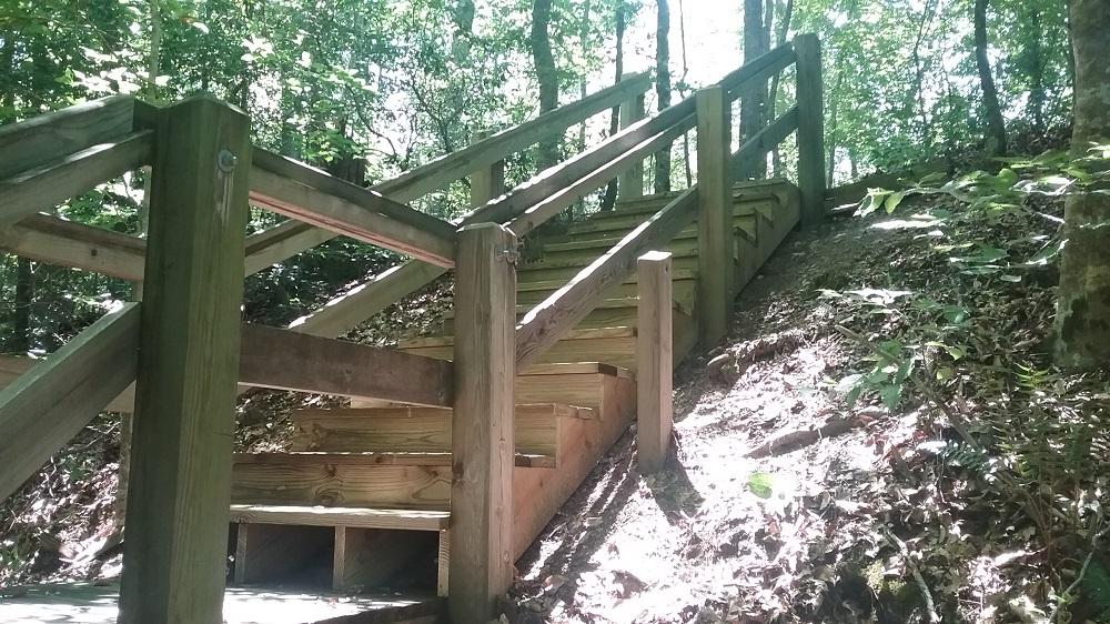 Bluff Loop Trail Steps
