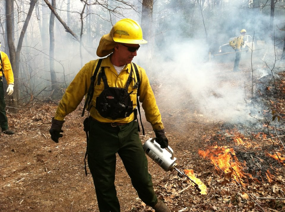 NC Divison of Parks and Recreation Staff Conducting a Prescribed Burn