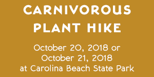 Carnivorous Plant Hike at Carolina Beach