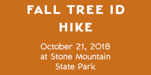 Stone Mountain Fall Tree ID Hike