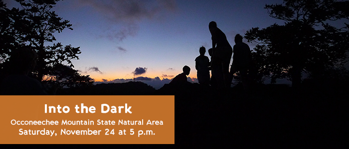 Into the Dark - Occoneechee Mountain State Natural Area