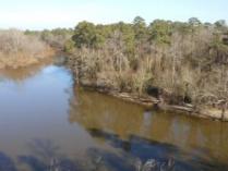 Neuse Paddle Trail
