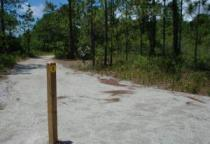 Fitness Trail at Carolina Beach State Park