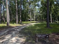 Cypress Point Loop Trail at Carvers Creek State Park, Spring Lake, NC