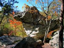 Rock Garden at Hanging Rock State Park. Photo by R. Curtis.
