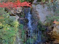 Tory's Falls at Hanging Rock State Park. Photo by R. Curtis.