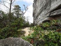 Jomeokee Trail at Pilot Mountain State Park