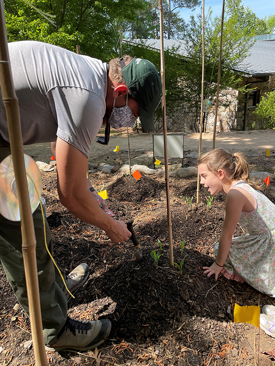 Ranger Jack Singley and a young helper work on the Three Sisters Garden at Historic Yates Mill County Park. Photo by J. Singley.
