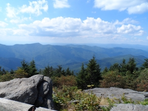 View from Mount Craig on Deep Gap Trail
